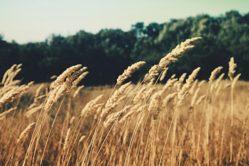 El aire acondicionado: foco del bienestar personal y la sostenibilidad del planeta