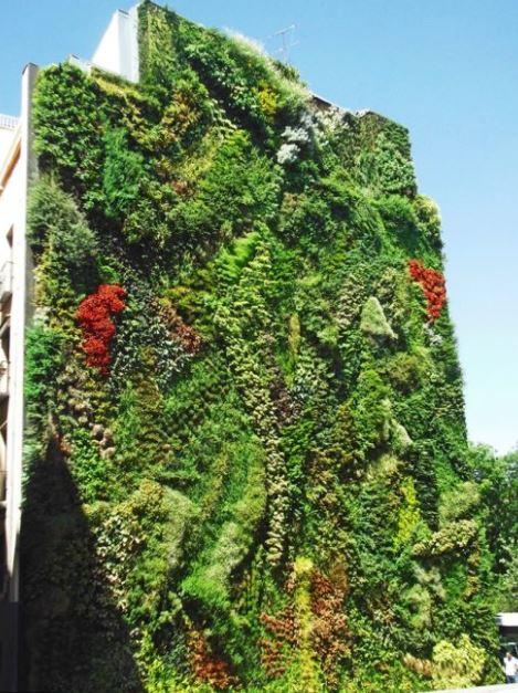 Jardín vertical en una fachada de edificio