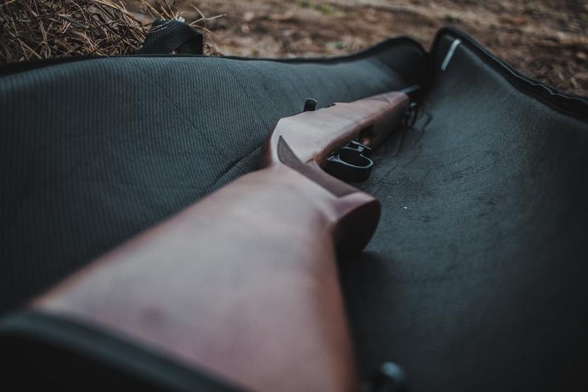 Qué es la tarjeta europea de armas de fuego